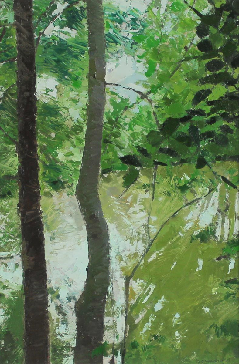 A Pond through Trees - Paul Donaghy