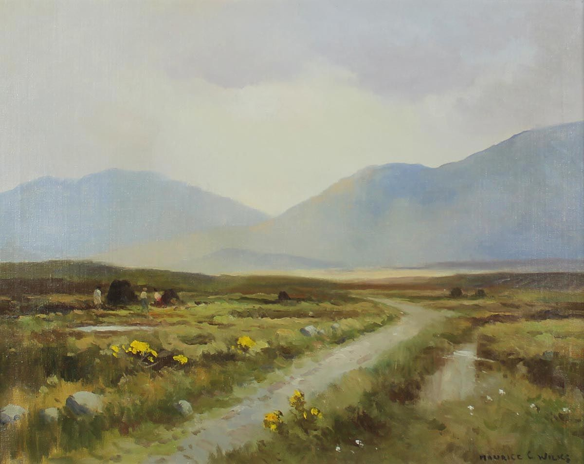Morning Light, Inagh Valley, Connemara - Maurice C Wilks