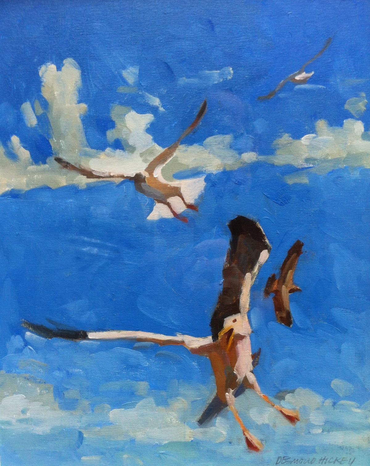 Seagulls Coming in for Scraps - Desmond Hickey